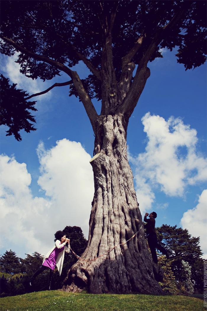 Golden_Gate_Park_Botanical_Garden_San_Francisco-10.JPG