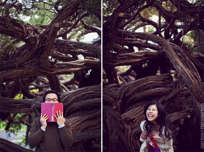 Golden_Gate_Park_Botanical_Garden_San_Francisco-06.JPG