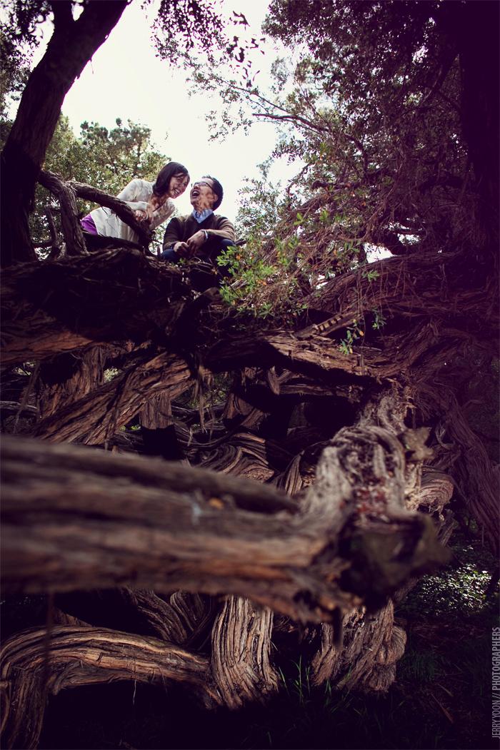 Golden_Gate_Park_Botanical_Garden_San_Francisco-18.JPG