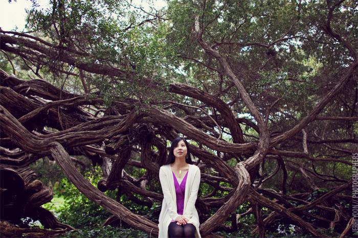 Golden_Gate_Park_Botanical_Garden_San_Francisco-14.JPG
