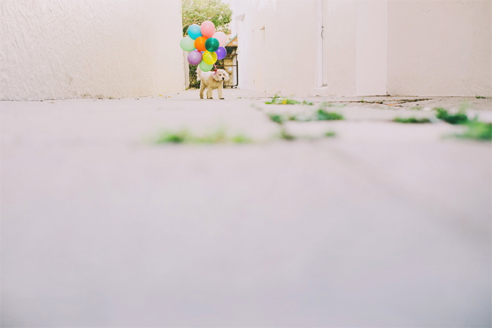 Mission_Mural_Balloon_Engagement_Photography-07.JPG