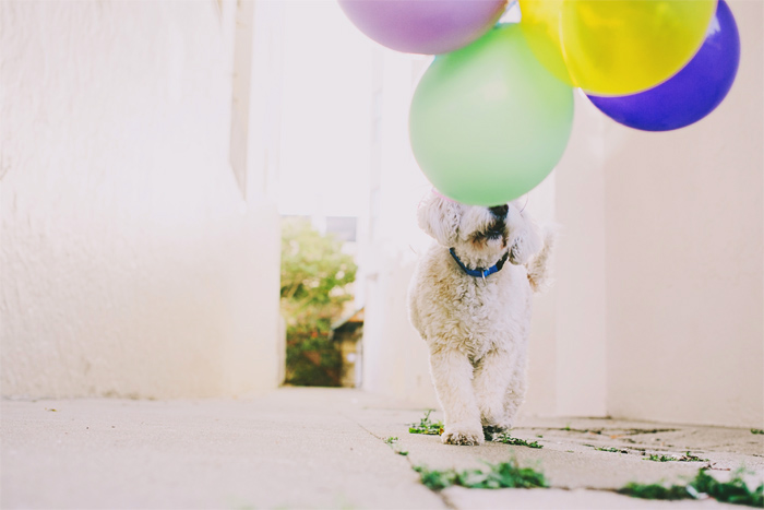Mission_Mural_Balloon_Engagement_Photography-09.JPG