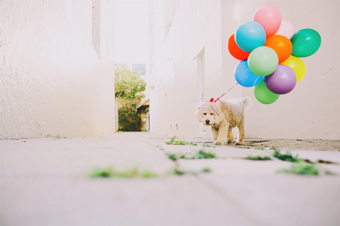 Mission_Mural_Balloon_Engagement_Photography-08.JPG