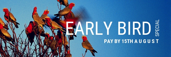 PI - EARLY BIRD Email Banner.jpg