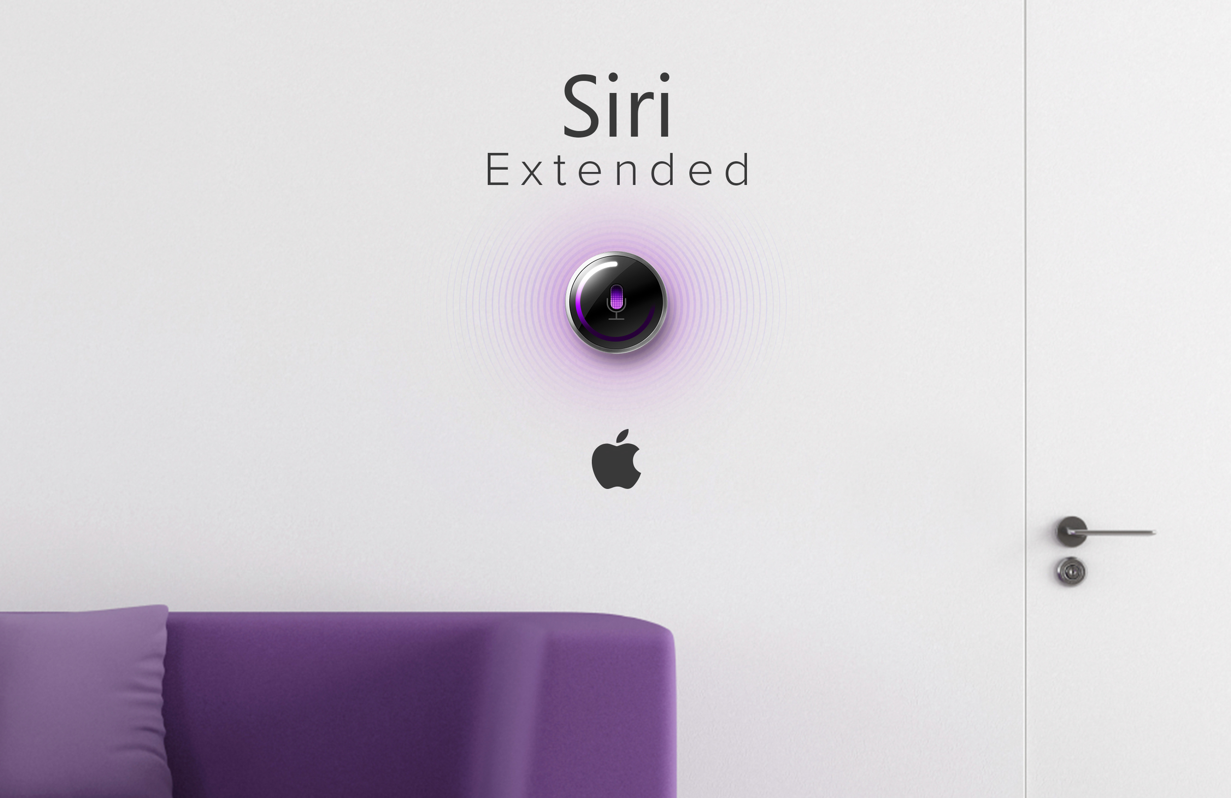 Siri_Ex_2.jpg