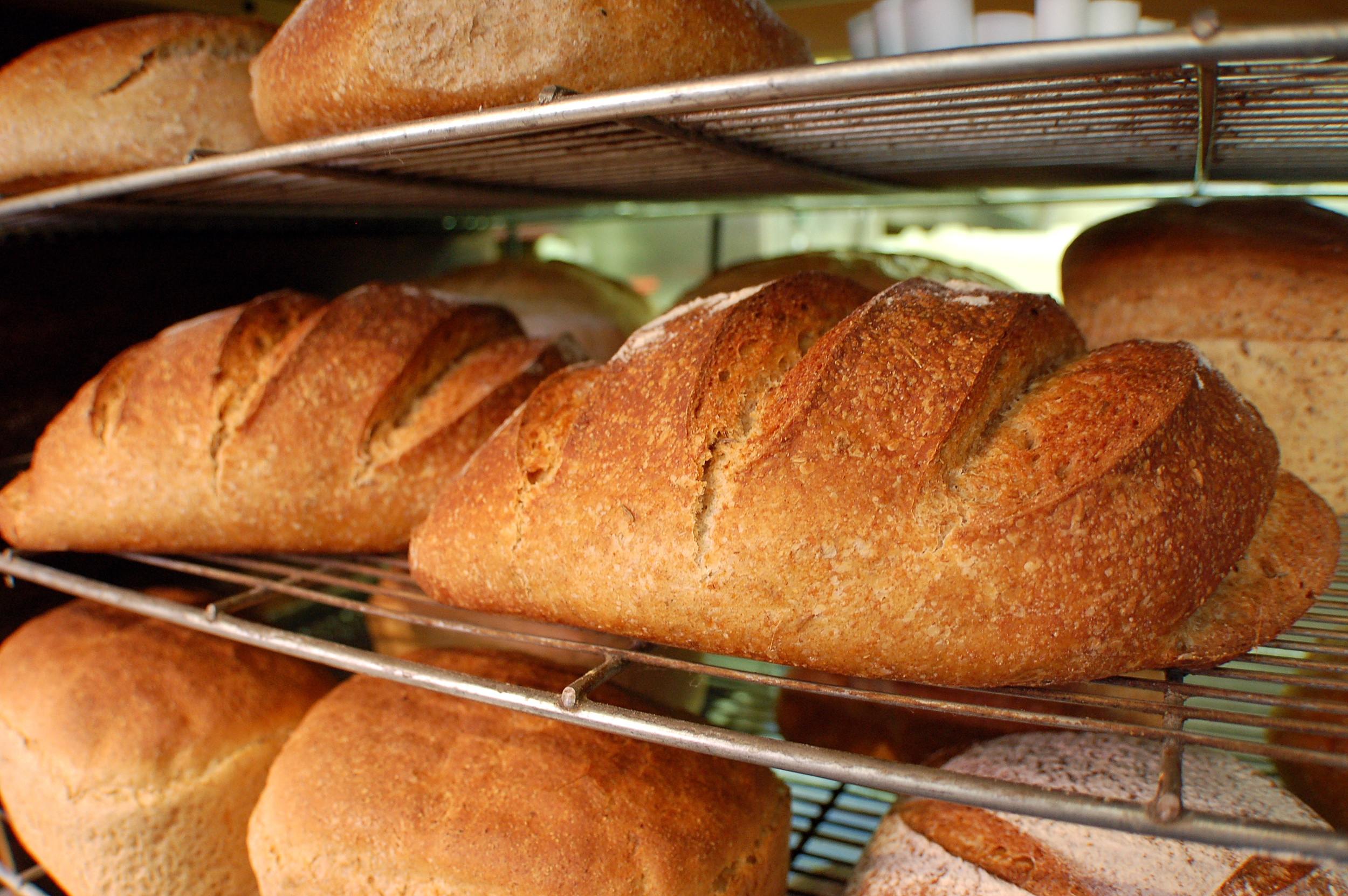 Organic bread delivered daily