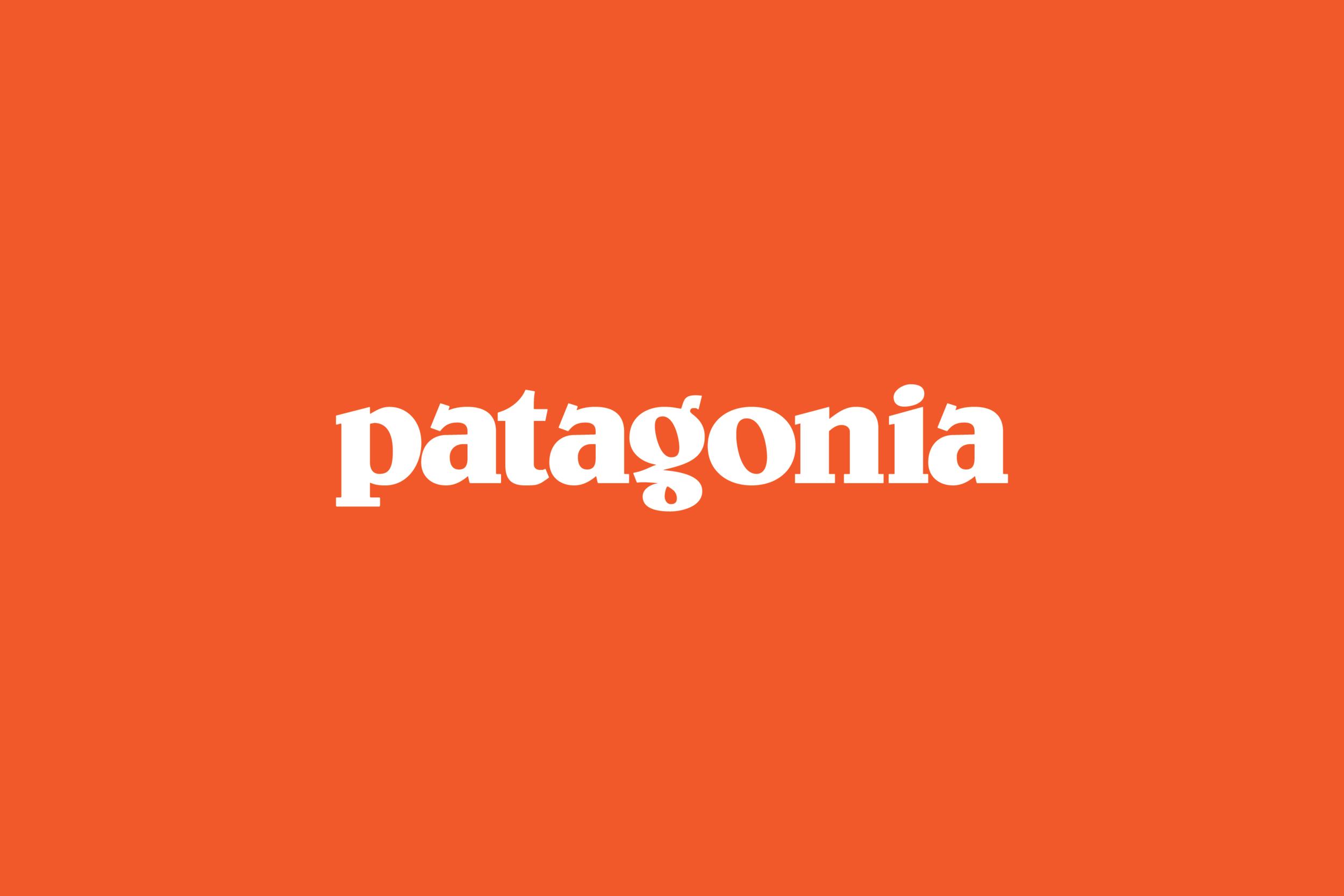 Wolfer_Patagonia_02.png