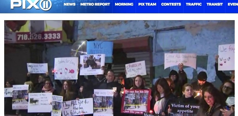 PIX11 (video+print):  Protesters hold vigil for runaway bull outside Queens slaughter...
