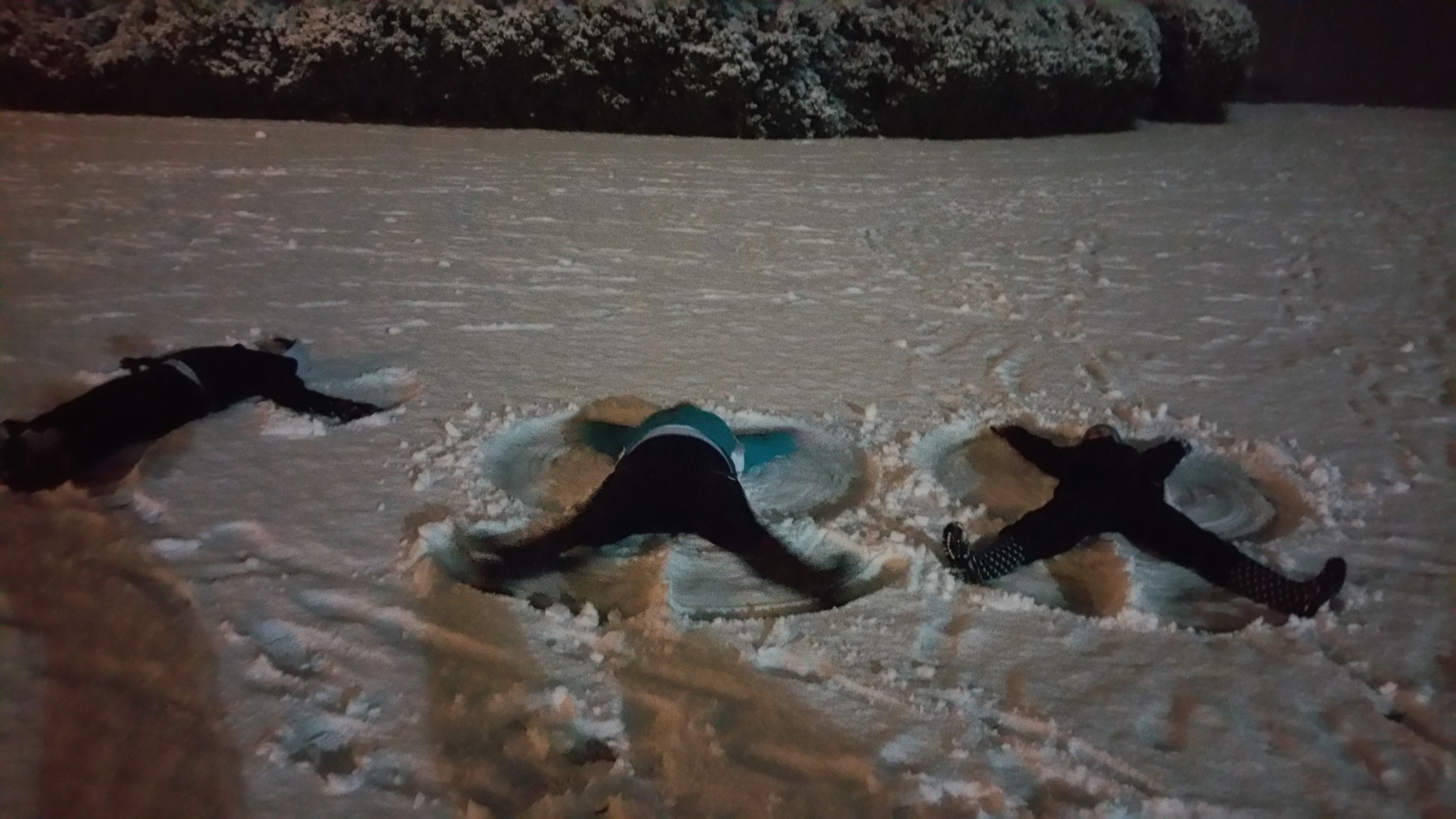 Students Megan Conley, Hayden Harris, and Jessie Prescott make snow angels. Photo by Alex Miller