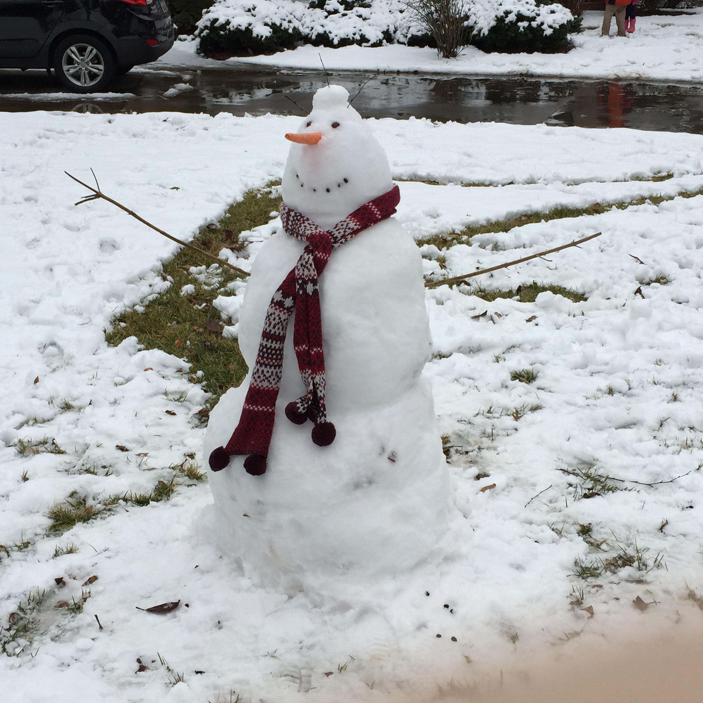 Commuters enjoy the snow too! Photo by Abbi Webb
