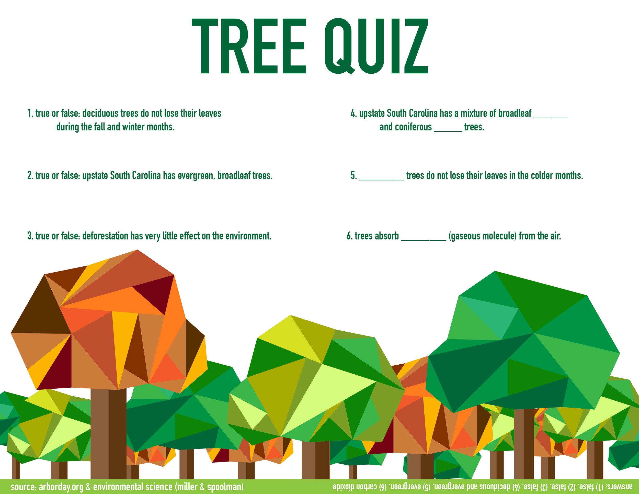 TreeQuiz-01.jpg
