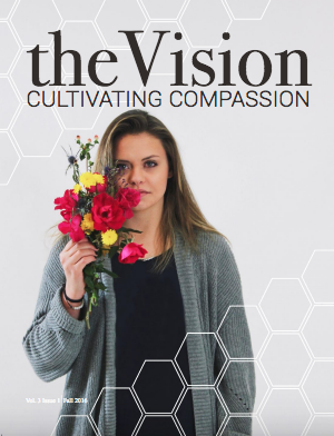 Image courtesy of the Vision Magazine.