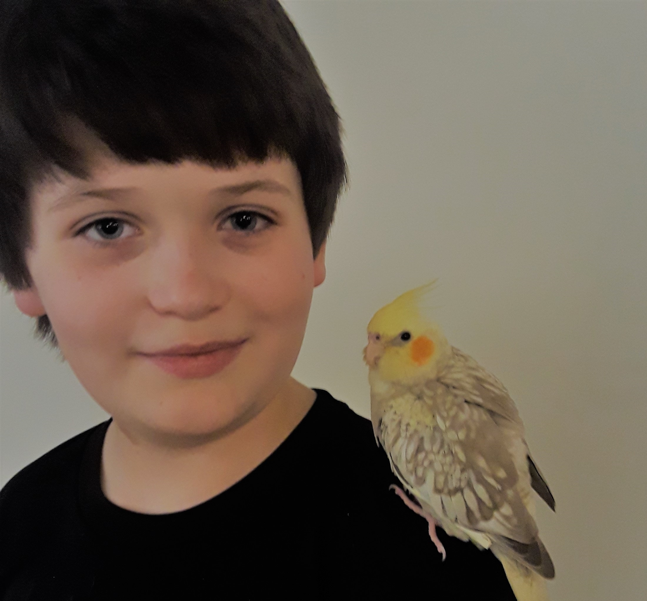 Trhea Elgin (5th grade) with his cockatiel, Tweetie. Tweetie is about a month old, still just a baby in bird terms, and is likely going to continue to grow a bit more. She can already mimic simple tunes by whistling.