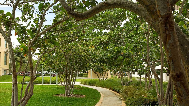 Barbara-Grygutis_The-Green-Wall_Palm-Beach-County-Assembly-Plaza-Florida_09.jpg