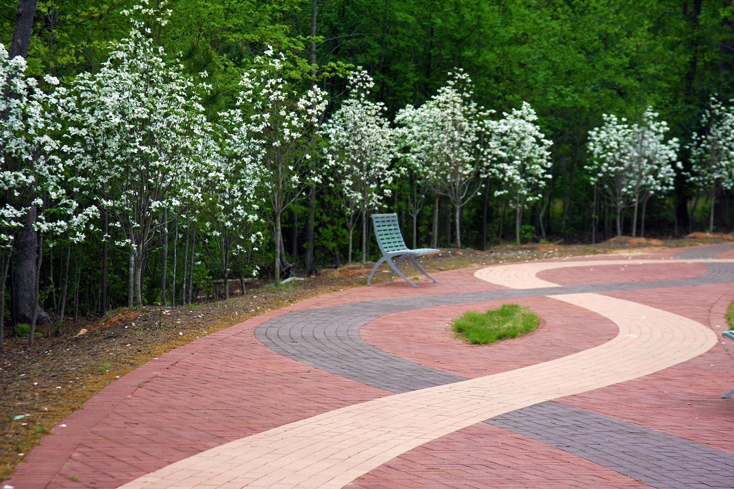 Walnut-Street-Park---Spring-2010-Nanci-Tanton's-photos-055.jpg