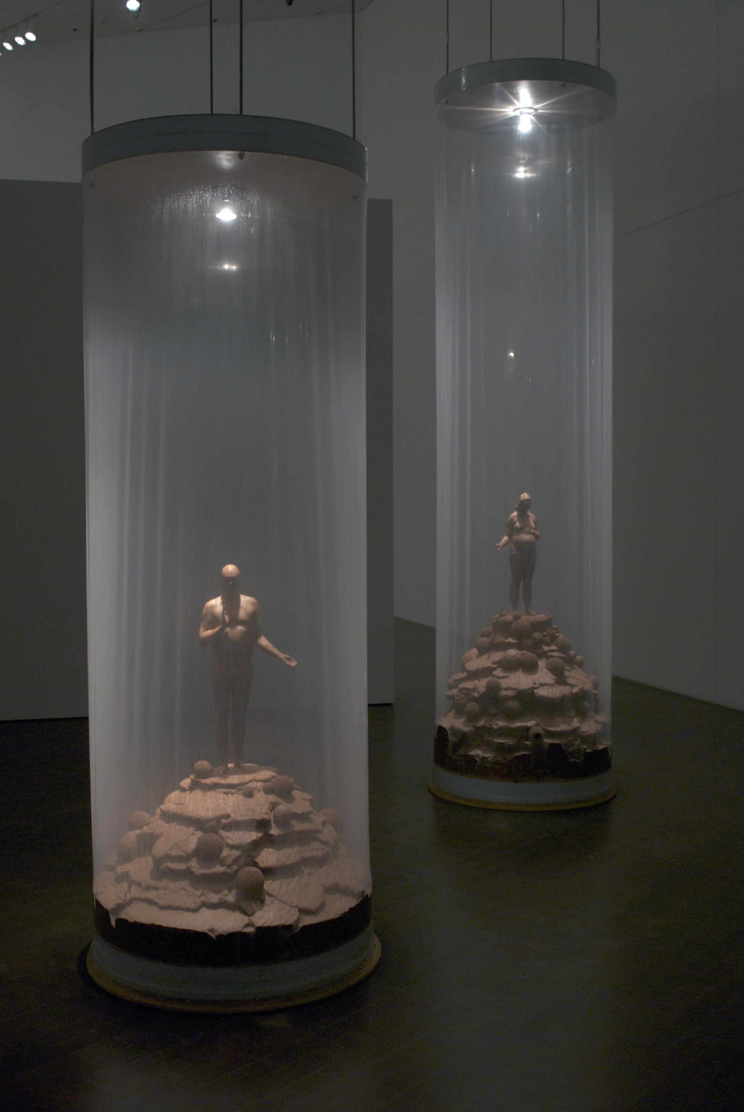 Hermetic Garden, 2011