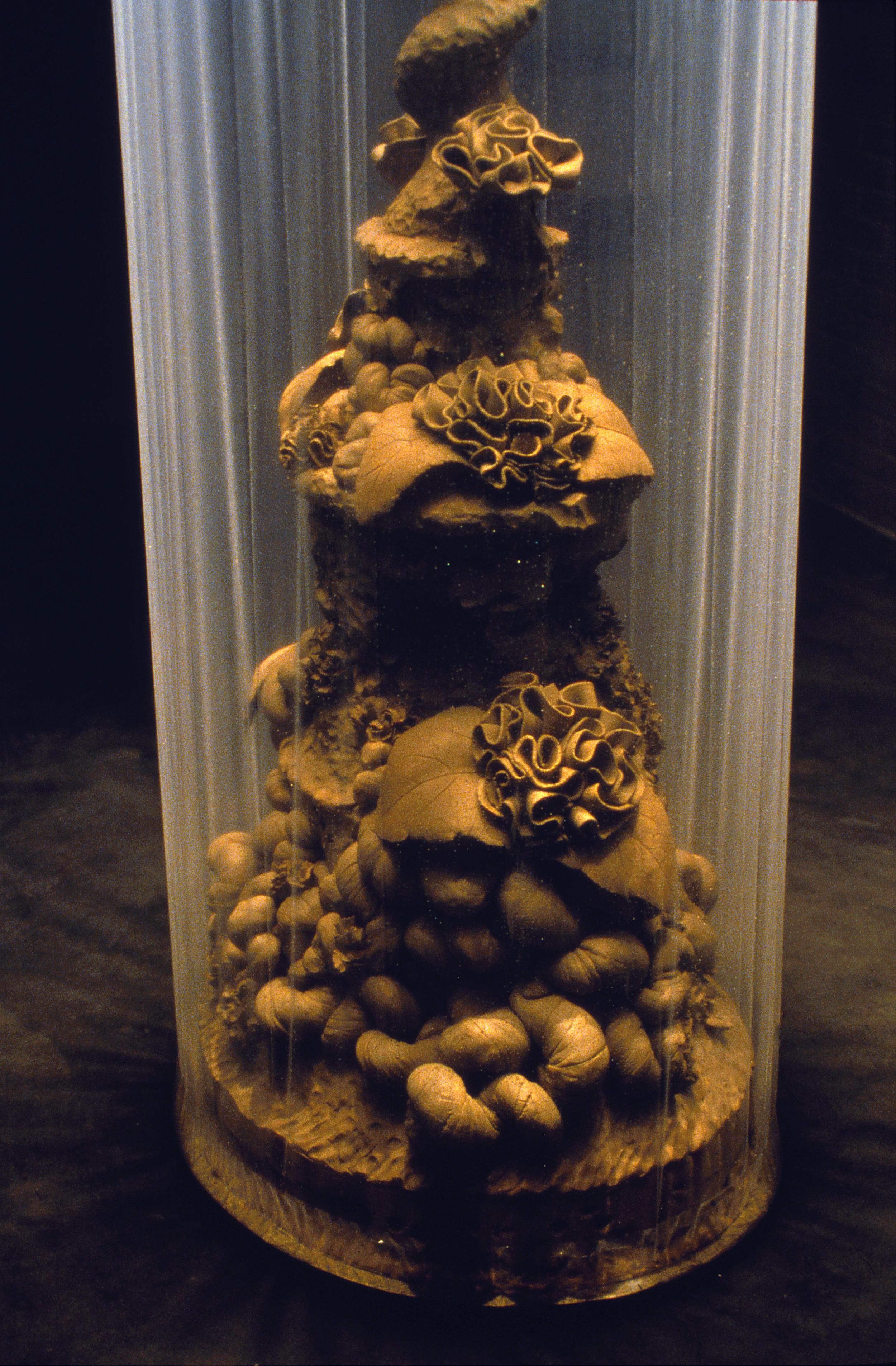 Topiary, 1999 (detail)