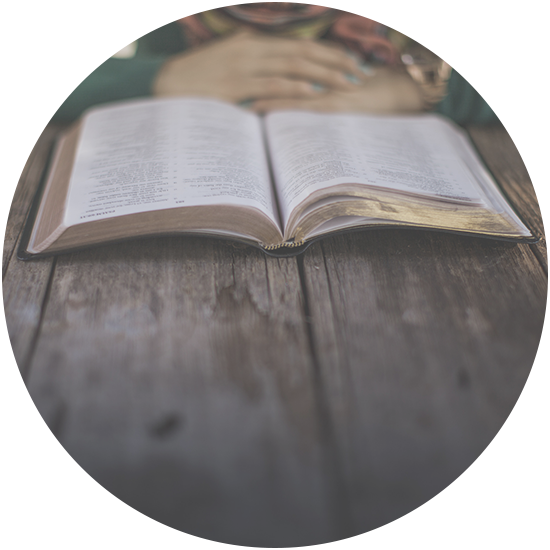 PC-Web-Believe-New_Bible_2.png