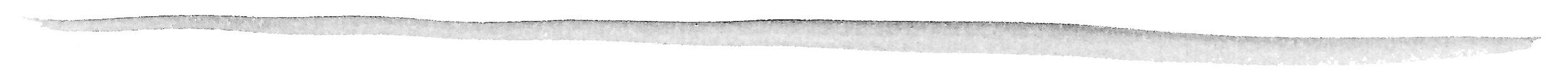 grey line.jpg