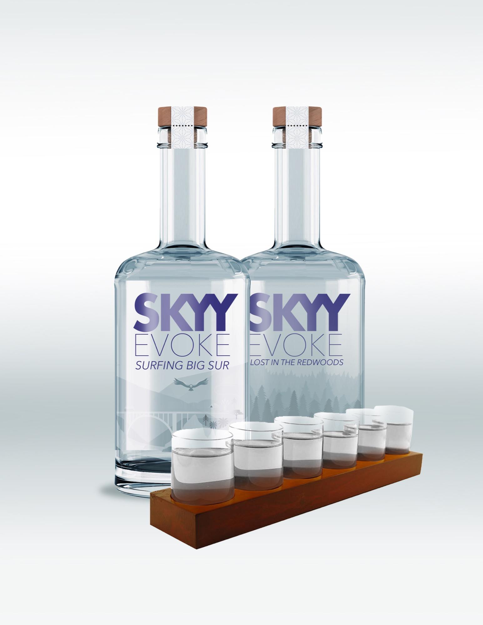 Skyy Evoke.jpg