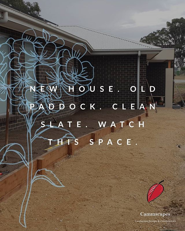 Stay tuned! 🙌😉 . . .  #landscapersaustralia #whatsinstore #gardens_of_instagram #loveeastgippsland #newspace #landscaping #exteriordesign #lovewhatyoudo #gardens #entrances #paving #weloveourjob #buildinggardens #earthmoving #pathway #raisedgardenbeds #brickwork #somethingdifferent #workhard #teamworkmakesthedreamwork