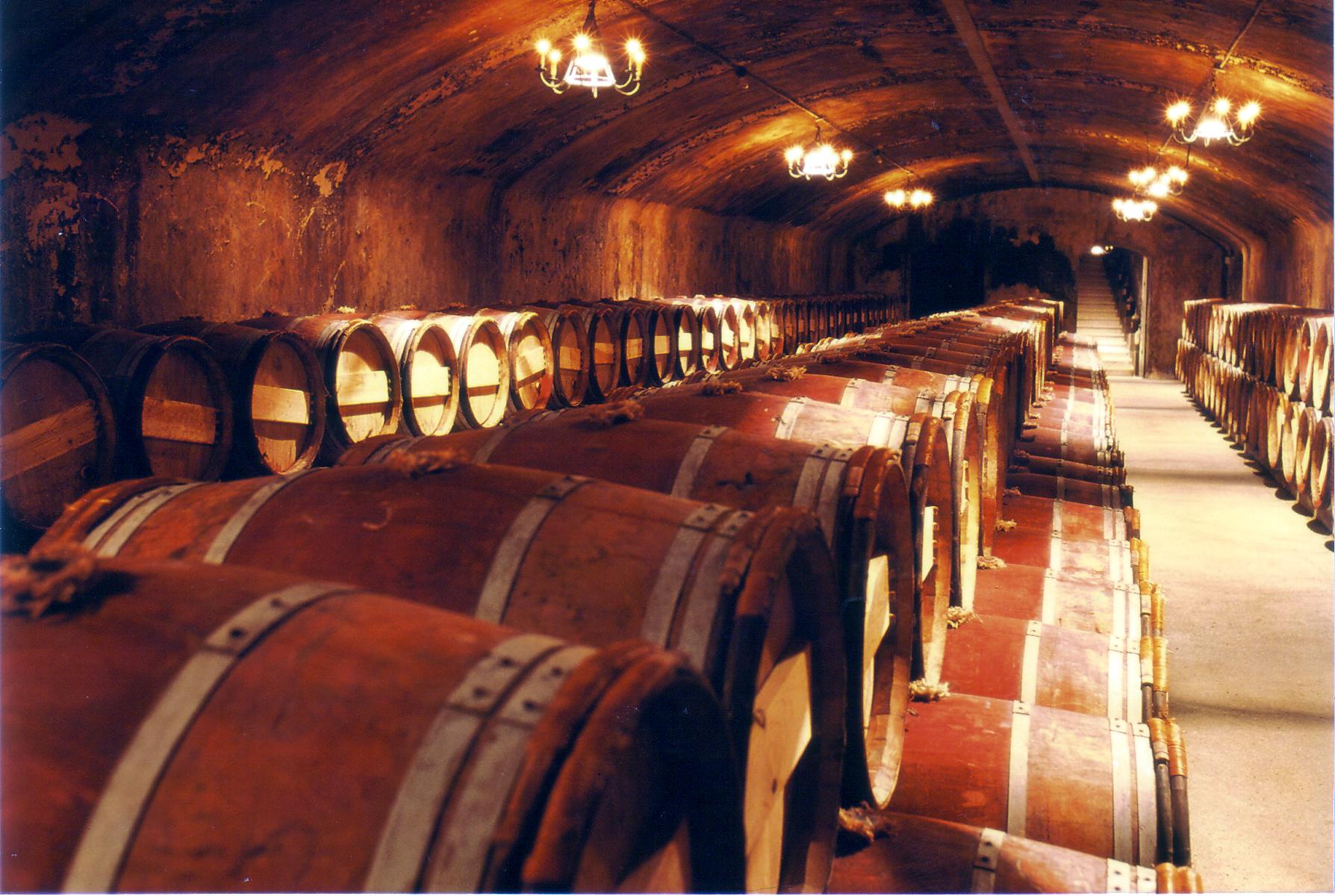 Lafite-cellar.jpg