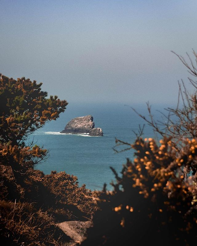 Looking out at St Agnes, Cornwall. The entire coastline is incredible  #goexplore #outdoors #forgeyourowpath #instadaily #natgeo #DOP #nature #outdoors #photography #digitalmarketing #In2nature #panasonic #agameoftones #camera #lightroom #GH5 #agameoftones #naturephotography #exploremore #theoutbound #outdoortones #effectsadventure