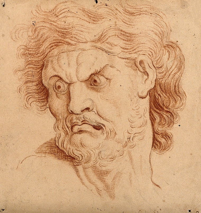 Is this truly the face of an angry man? ( Drawing, 18th century (?), after C. Le Brun , Wellcome Collection). Or is he merely combobulated?