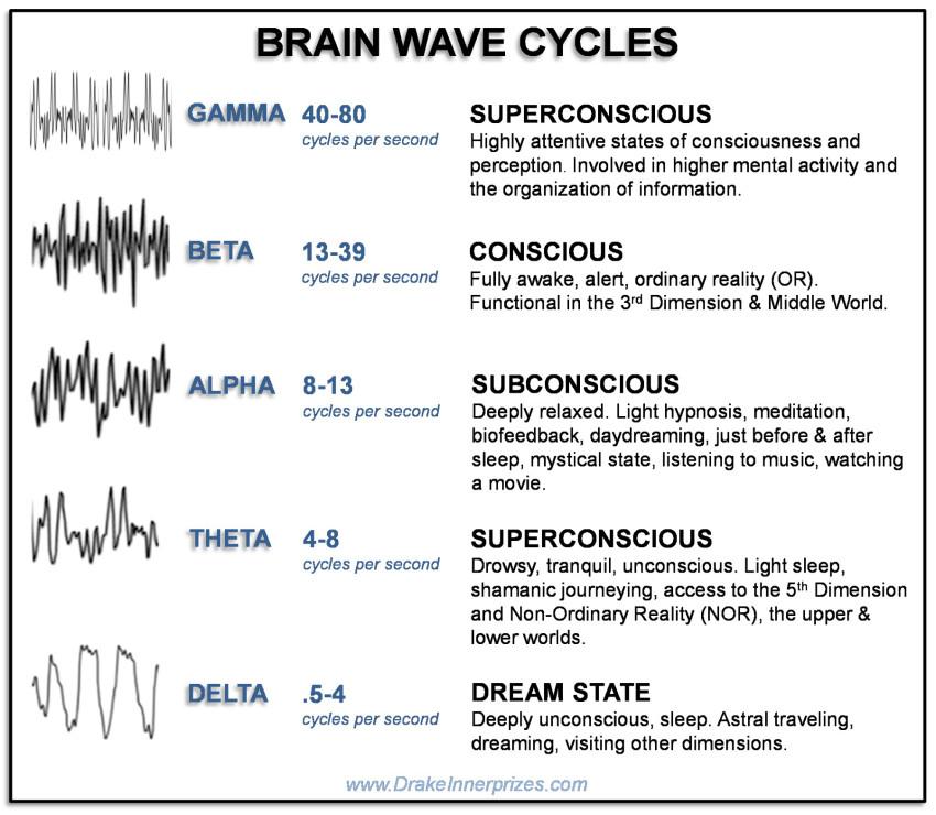 Brain Wave Map