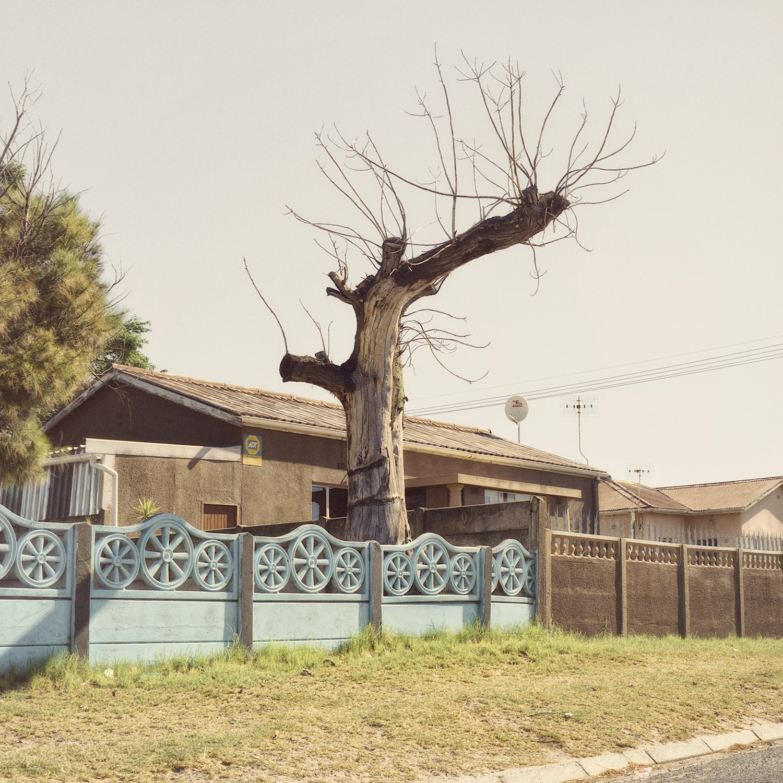 African Photography Network Dillon Marsh13.jpg