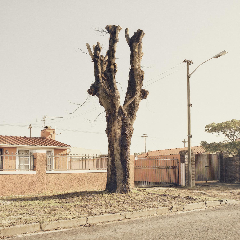African Photography Network Dillon Marsh15.jpg