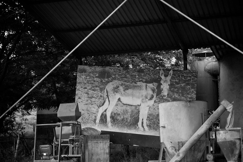 African Photography Network Jac Kritzinger5.jpg
