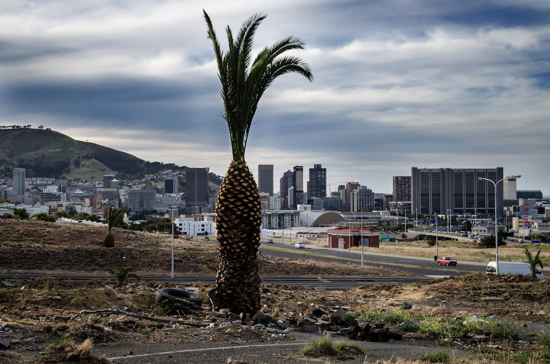 African Photography Network Jon Riordan1.jpg