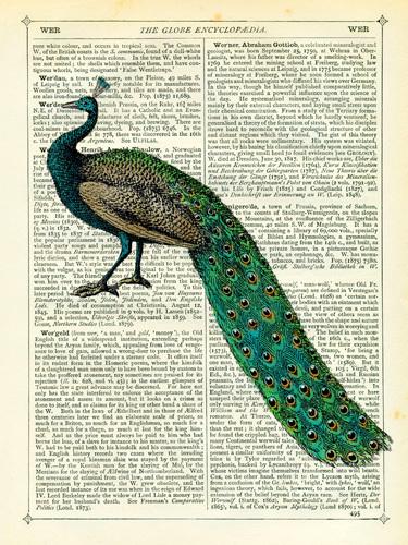 Peacock print   Marion McConagie   . Images courtesy of easyart.com