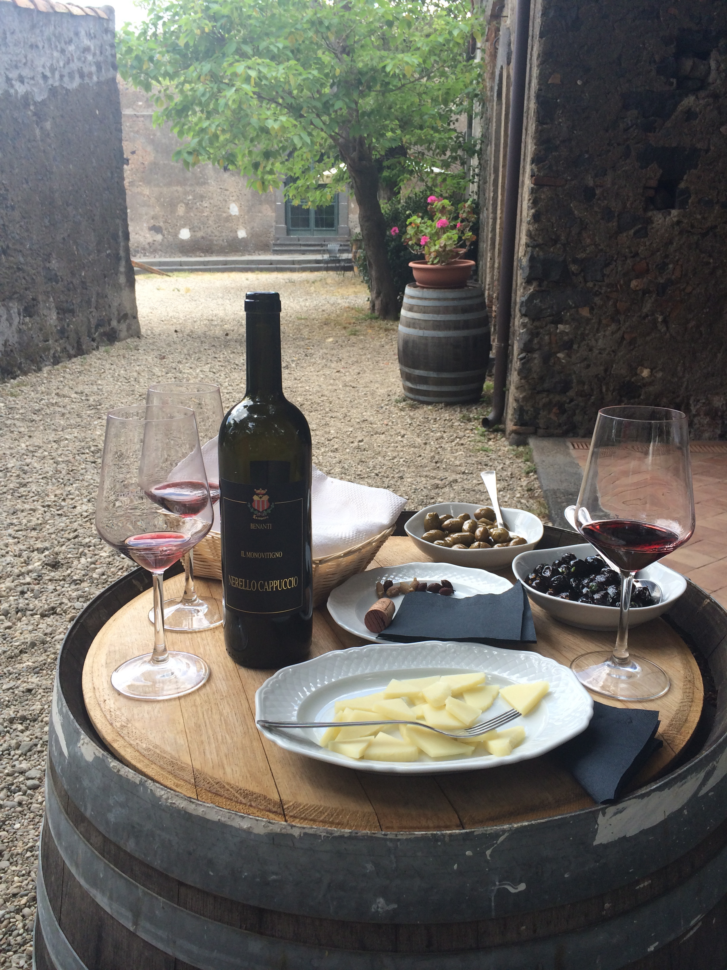 Best Wine Tour of Sicily