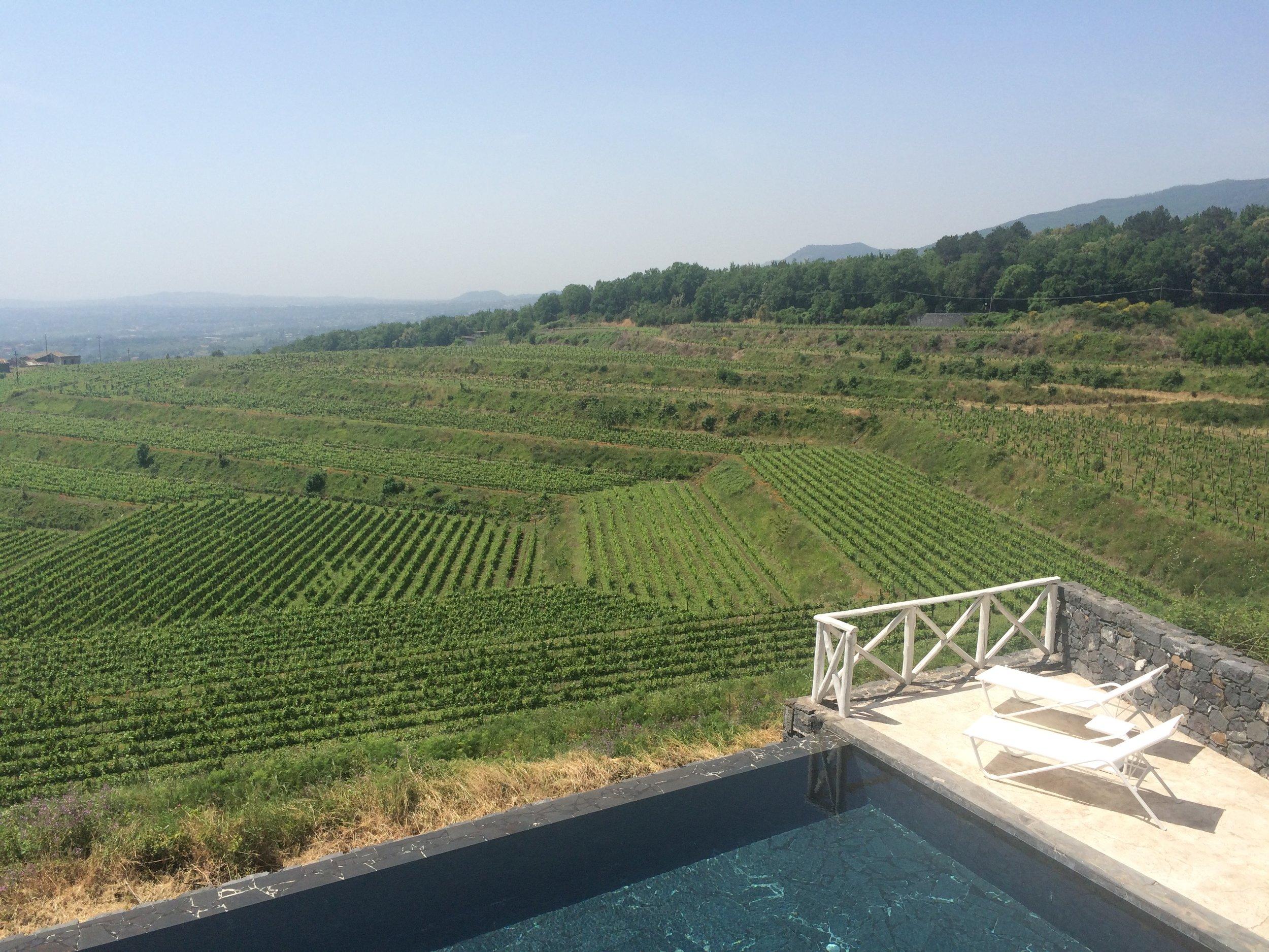 La Dolce Vigna - Private Italy Wine Tour