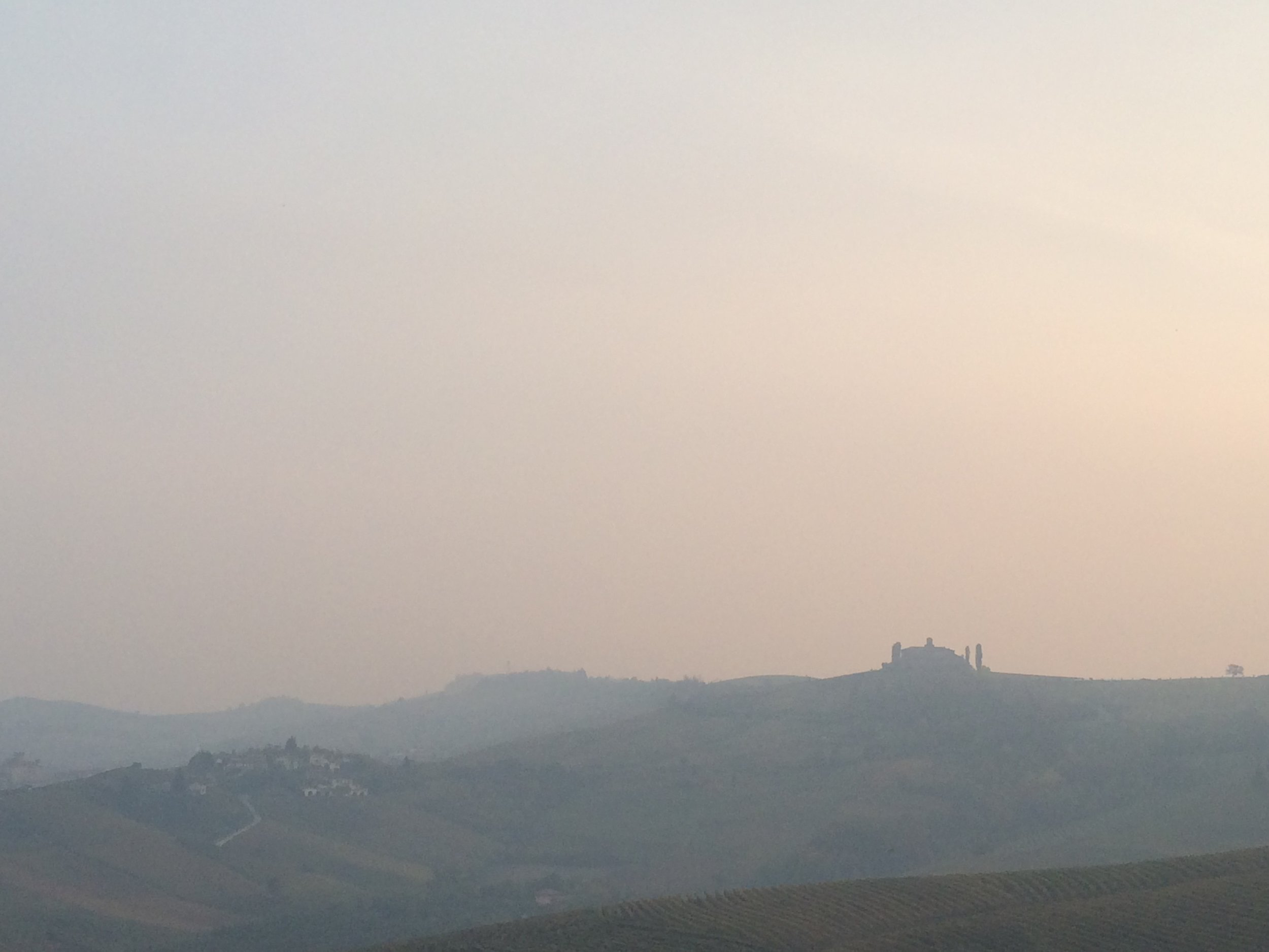 Copy of Best Piemonte Wine Tour - View of the Langhe
