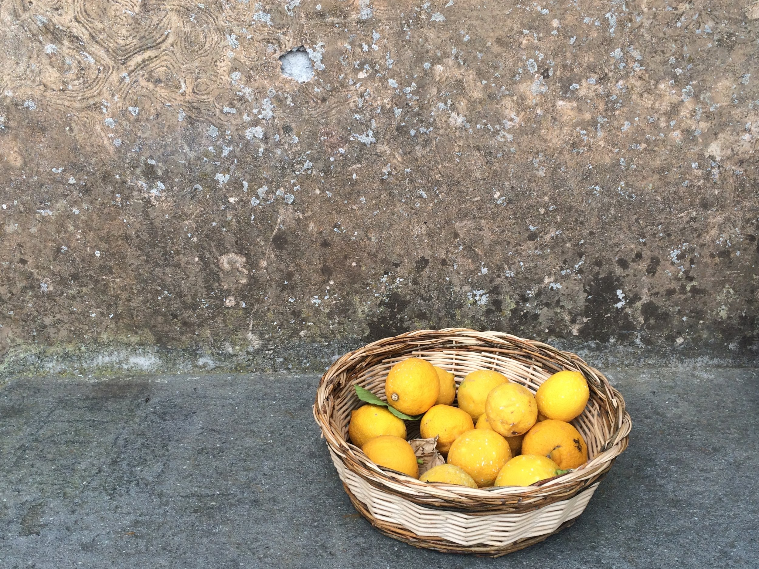 Blissful Yoga Retreat in Tuscany - Basket of lemons