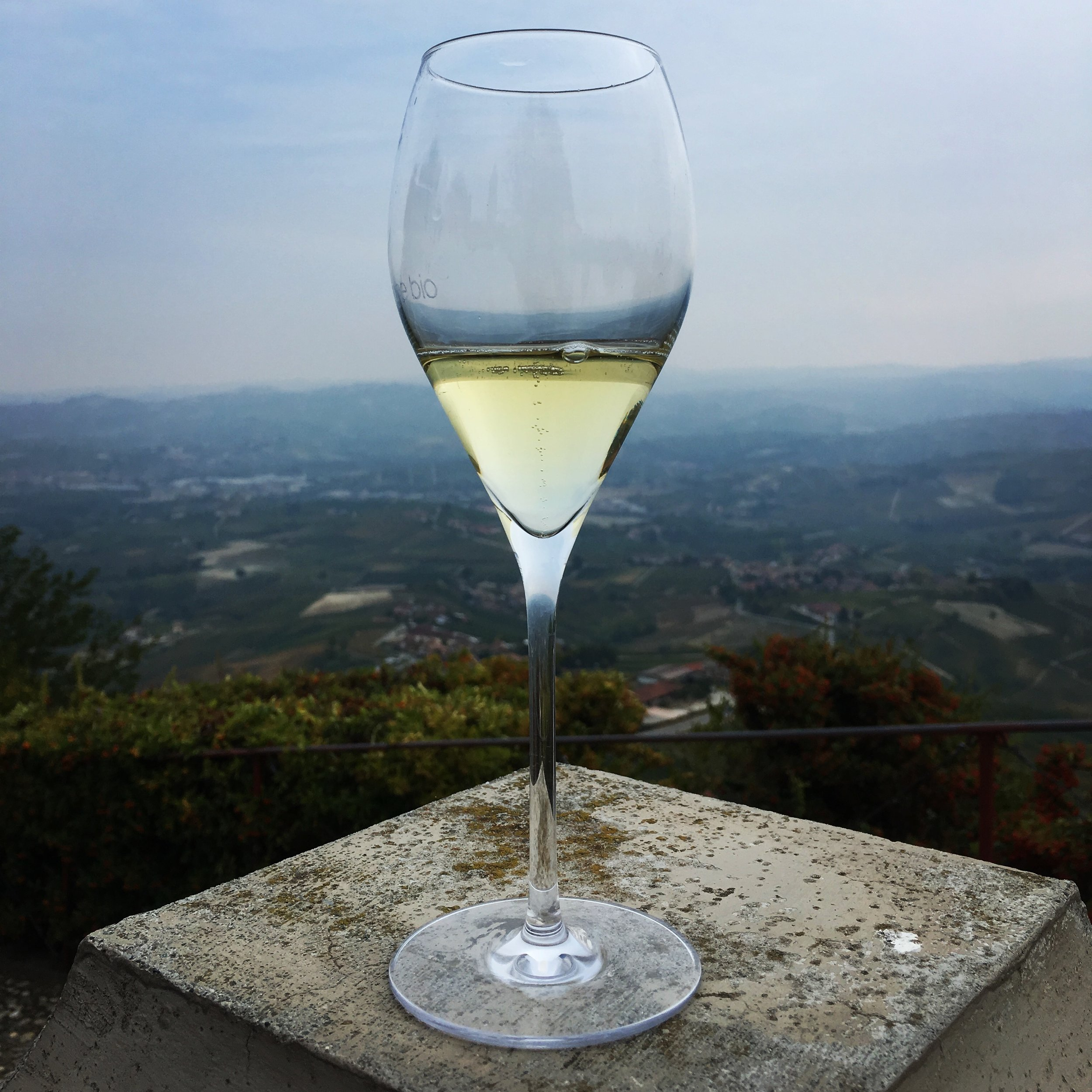 Try-new-wine-in-Italy_La-Dolce-Vigna_1
