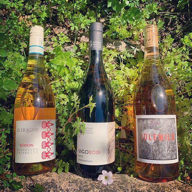 La Dolce Vigna_Earth-friendly-roses-wine.jpeg