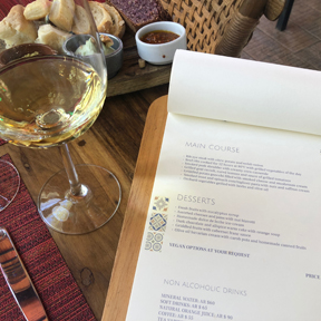 La Dolce Vigna - Mendoza Wine Tour - Best Winery Lunches - El Enemigo - 1.jpg