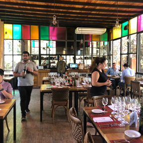 La Dolce Vigna - Mendoza Wine Tour - Best Winery Lunches - El Enemigo - 3.jpg