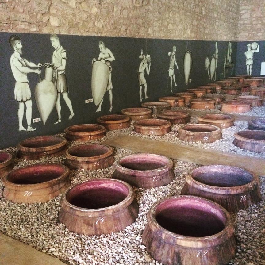 small-La-Dolce-Vigna_Sicily-Wine.jpg