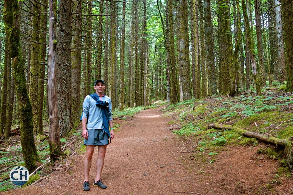 JC Forest