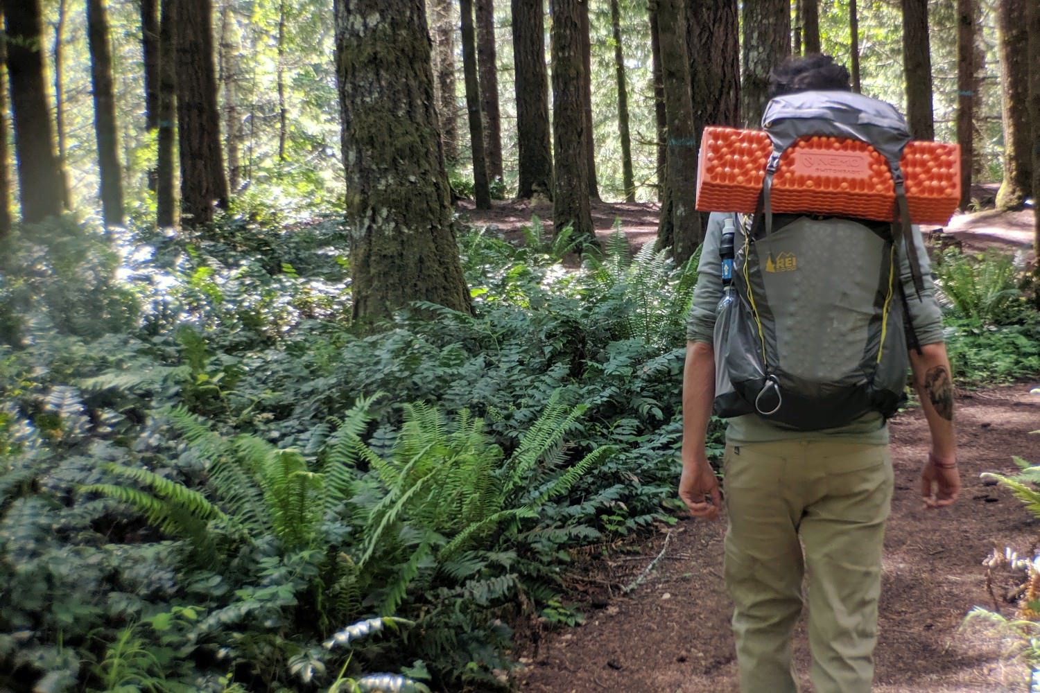 the  REI Co-op Flash 55  is an excellent new budget pack.