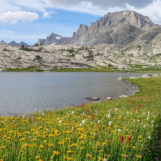 Annie and I went out on a five day trip in the Wind River Range earlier this month and it was top notch. 🙌