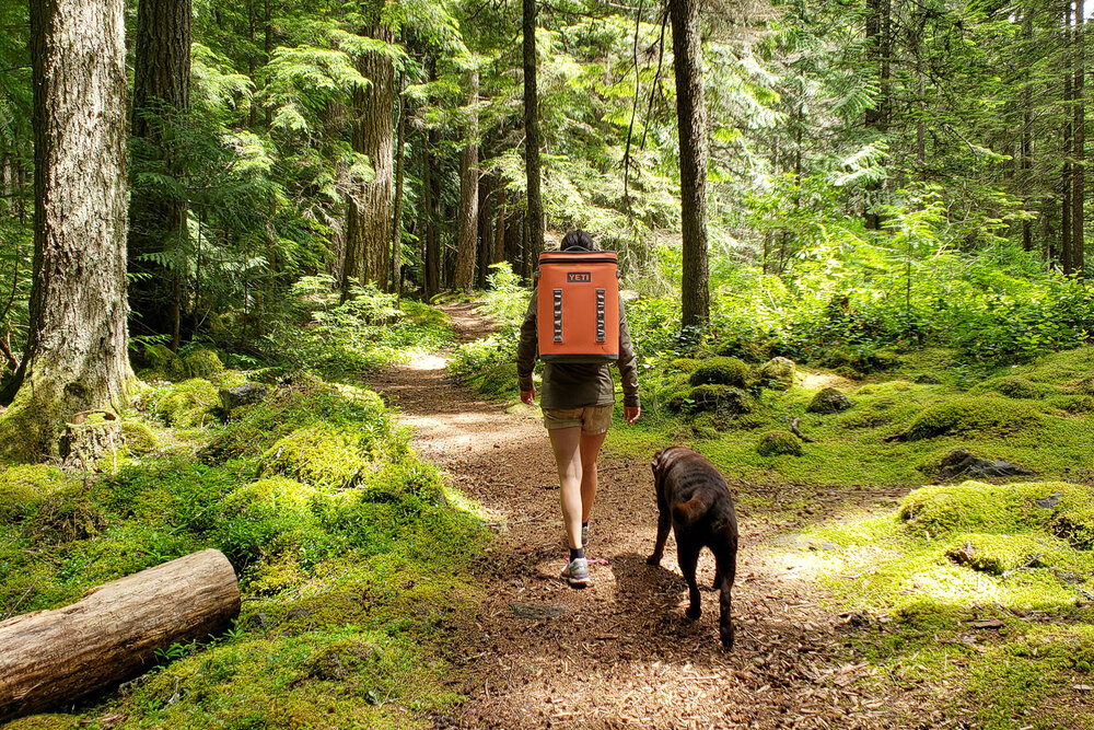 The  YETI Hopper Backflip cooler  is perfect for toting drinks and a picnic on short hikes, so it's a great way item to use your 20% coupon on