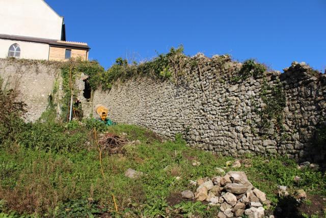 Burgage Walls