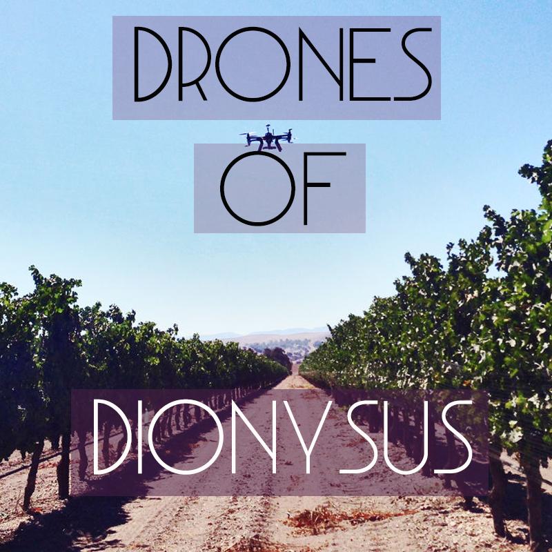 droneshomepage.png