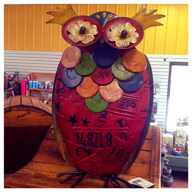 MS Store Owl Solo.jpg